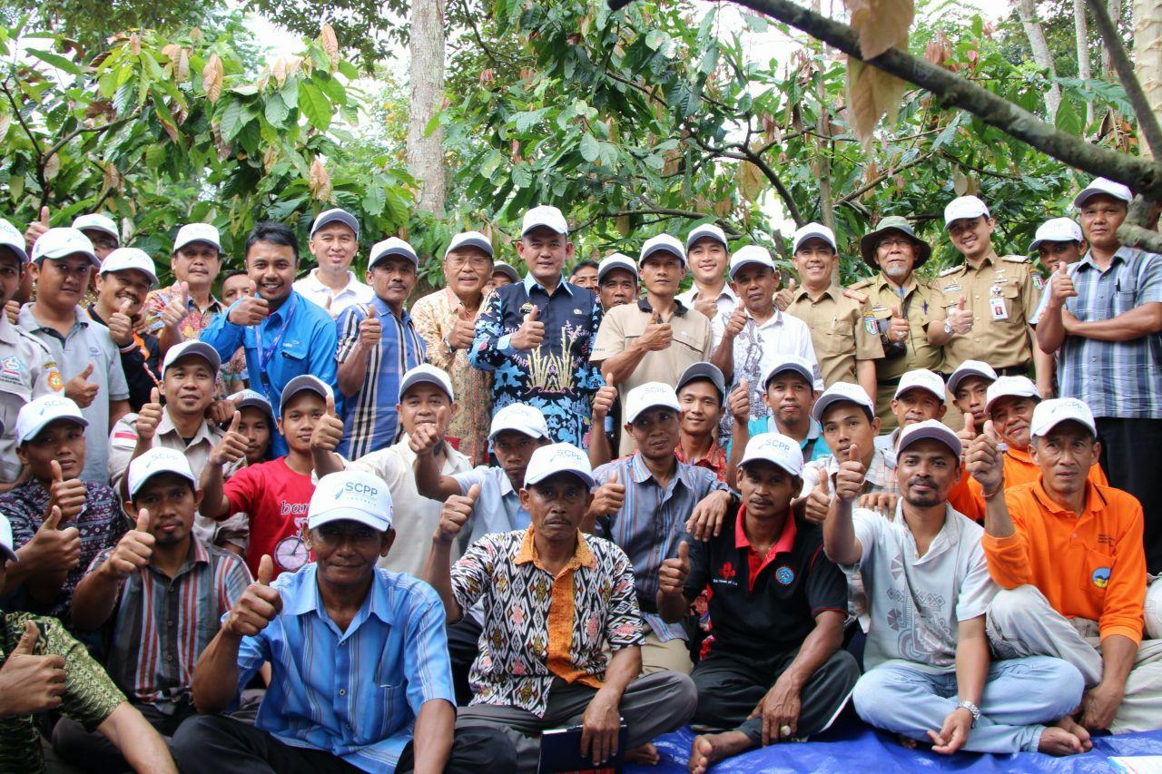 Wakil Bupati Pringsewu Kunjungi Petani Kakao yang Mendapat Pendampingan