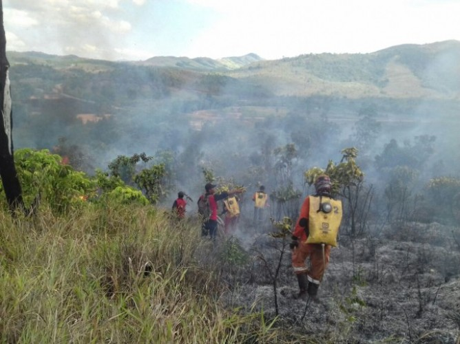 1.500 Hektare Hutan di Kalsel Terbakar