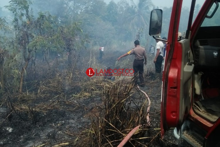 1 Hektare Lahan Kering di Rajabasa Terbakar