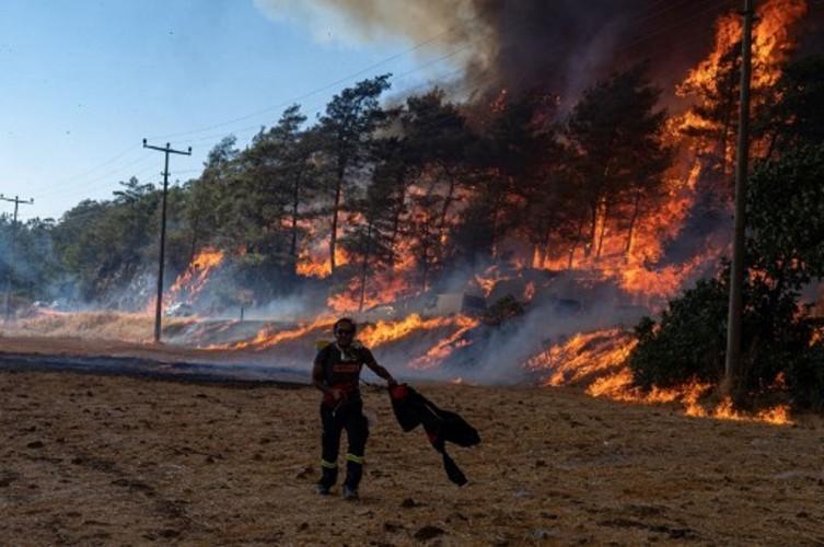 10 Ribu Warga Dievakuasi Akibat Kebakaran Hutan Turki