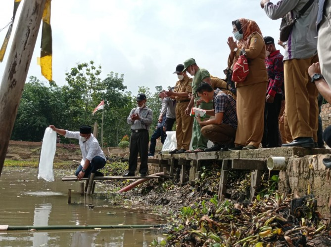 105 Ribu Benih Ikan Jelabat Dilepas ke Sungai Desa Rulung Raya