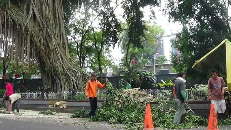 107 TKS Distanakbun Bandar Lampung Pertanyakan Kejelasan Uang Makan