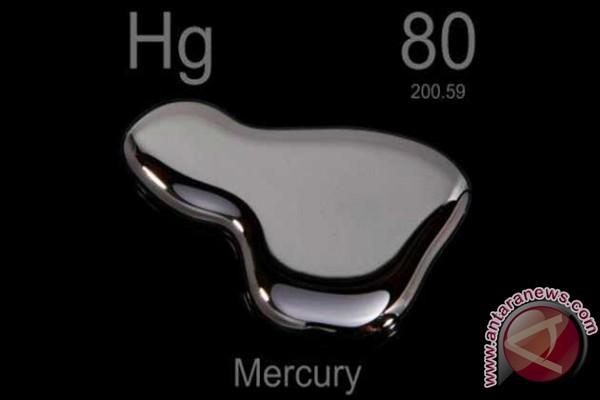 DPR Setujui RUU Ratifikasi Konvensi Minamata mengenai Merkuri