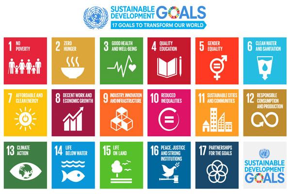 Melokalkan SDGs untuk Lampung
