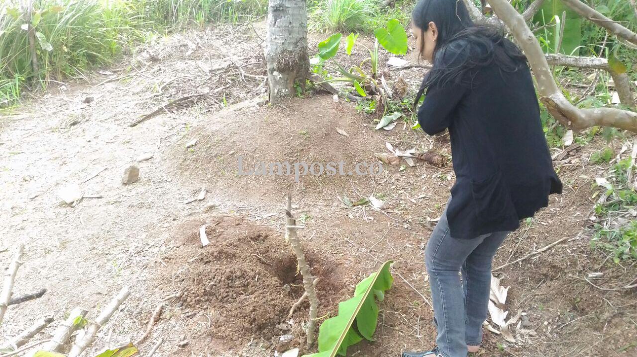 Polisi Usut Penemuan Mayat Orok di Kebun Singkong, Kemiling