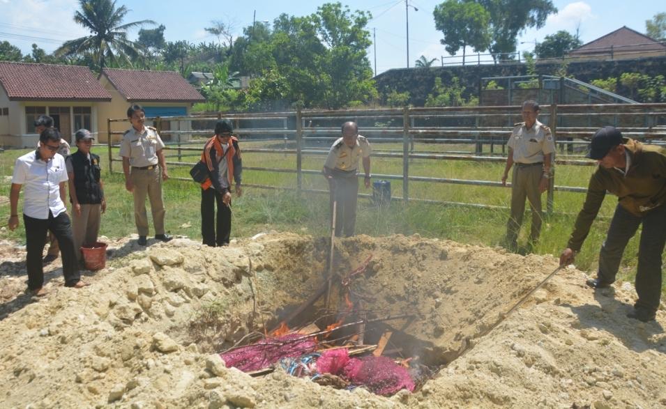 4 Ton Daging Celeng Sitaan Dimusnahkan dengan Cara Dibakar