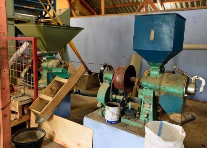 300 Pabrik Beras Belum Teregistarsi Keamanan Mutu Pangan