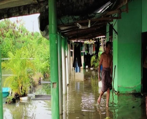 300 Rumah di Kampung Bratasena Adiwarna Terendam Banjir Rob