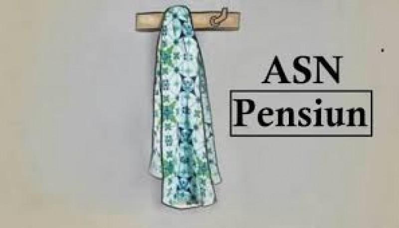 343 ASN di Lamsel Segera Pensiun