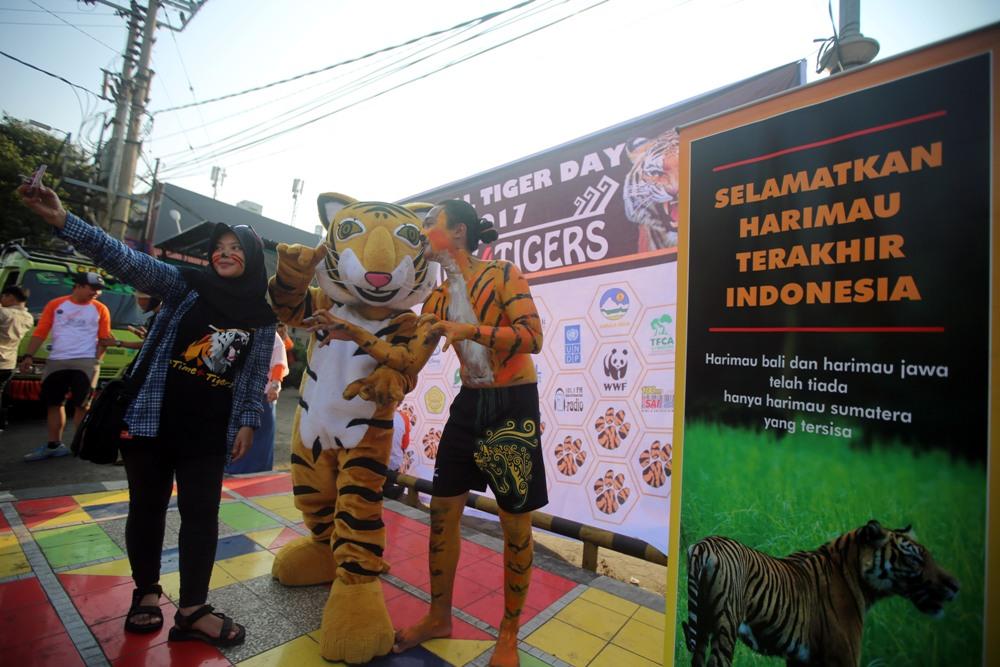 Peringatan Global Tiger Day di Bandar Lampung Ajak Masyarakat Peduli