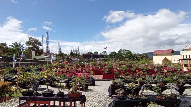 719 Bonsai Dipamerkan di Kawasan Kebun Raya Liwa