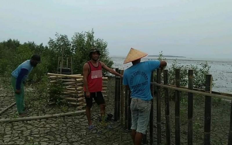 8 Kelompok Masyarakat Dapat Program Padat Karya Penanaman Mangrove