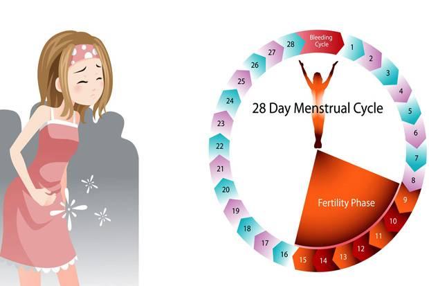 Diskusi Menstruasi