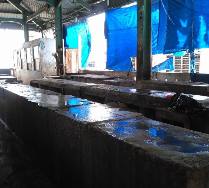 Ikan Laut Menghilang, Konsumen Serbu Ikan Air Tawar