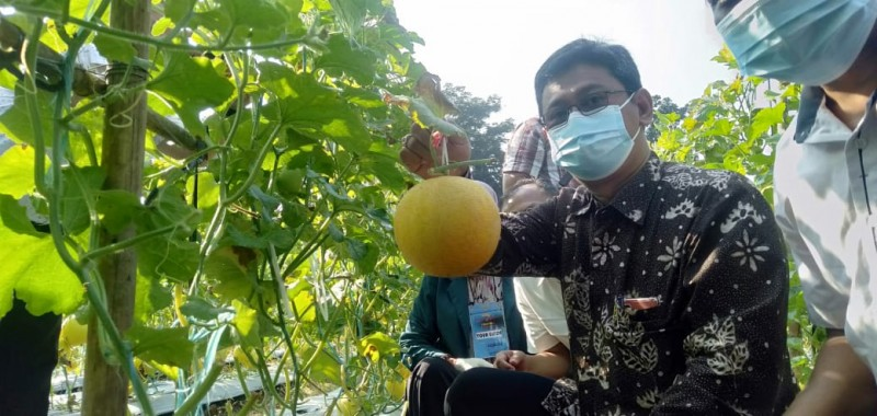 Agrowisata Unila Kembali Dibuka untuk Umum