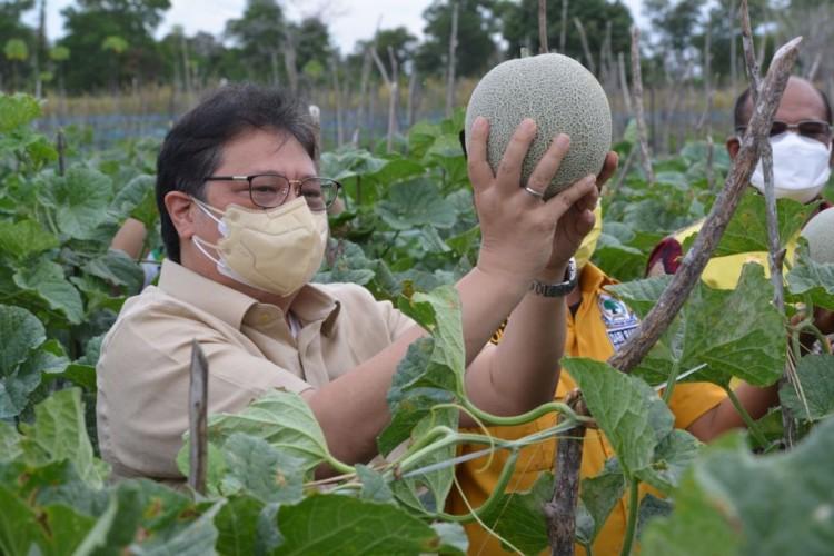 Airlangga Apresiasi Pemda Kalsel Bantu Warga Isoman dari Hasil Panen Petani