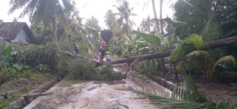 Angin Puting Beliung Rusak Puluhan Rumah Warga Pasir Sakti dan Sukadana