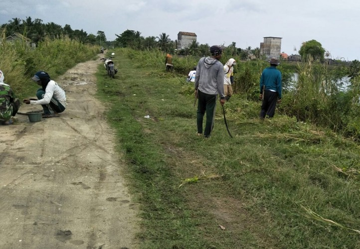Antisipasi Banjir, UPTD PUPR Sragi Bersih-bersih Tanggul Way Sekampung