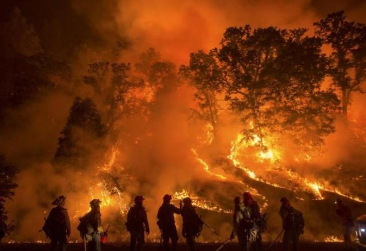Antisipasi Kebakaran Hutan, Polhut Tingkatkan Patroli dan Larang Warga Bakar Sampah Sembarangan