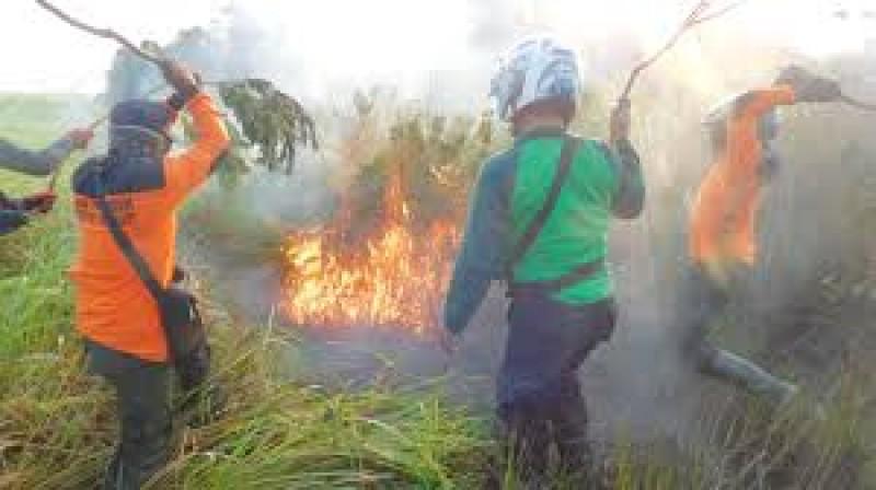 Antisipasi Kebakaran SaatKemarau, Pemkab Lamtim Bentuk TRC Terpadu