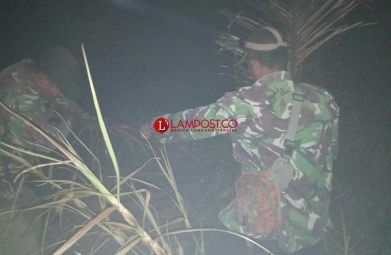Antisipasi Kebakaran, TNI AD di Rawajitu Sisir Titik Api di Lahan Gambut
