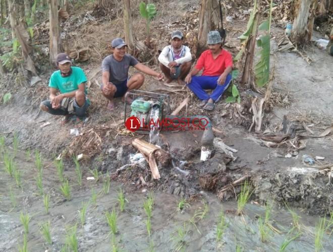 Atasi Kemarau, Pemdes Margasari Bantu Petani Sumur Bor