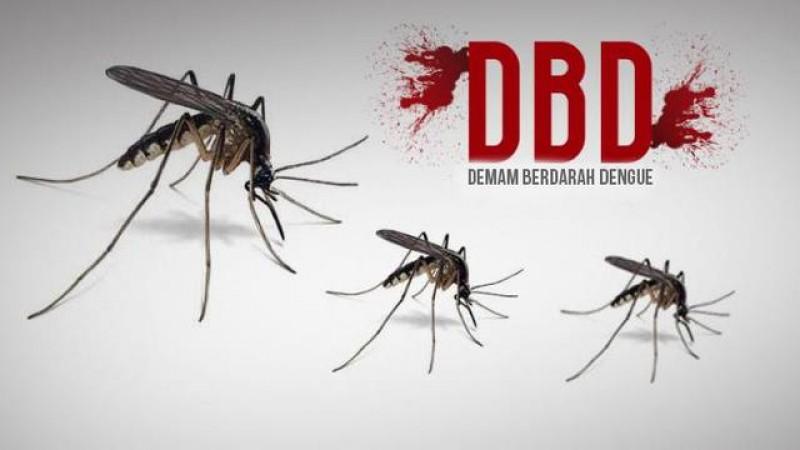 Awal Tahun, Jumlah Kasus DBD di Bandar Lampung Menurun