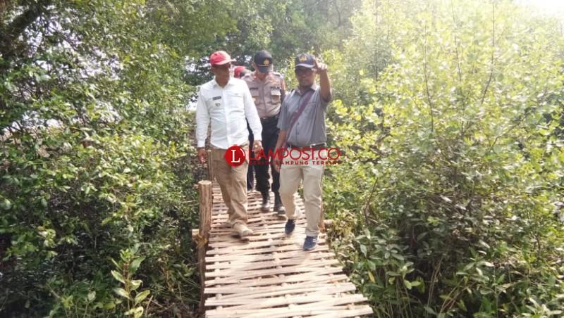 Bandaragung Kembangkan Hutan Mangrove Untuk Wisata