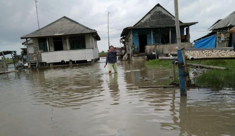 Banjir Rob Kembali Rendam Pemukiman Warga Dusun Kualajaya