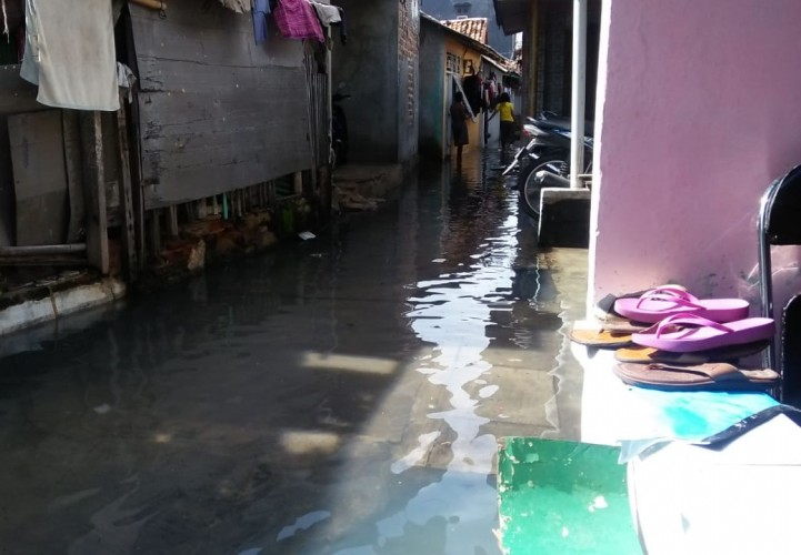 Banjir Rob Kembali Rendam Pemukiman Warga