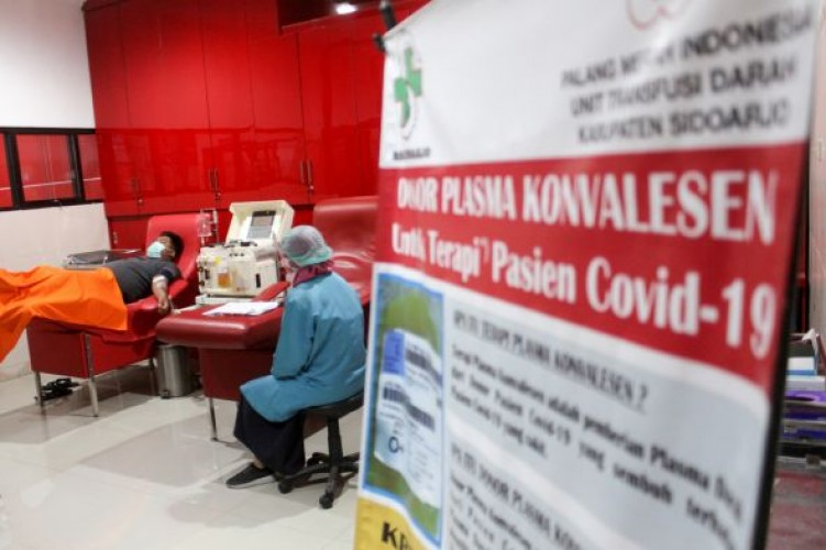Belum Ada Permintaan Plasma Konvalesen dari Pasien Covid-19 di Lampung