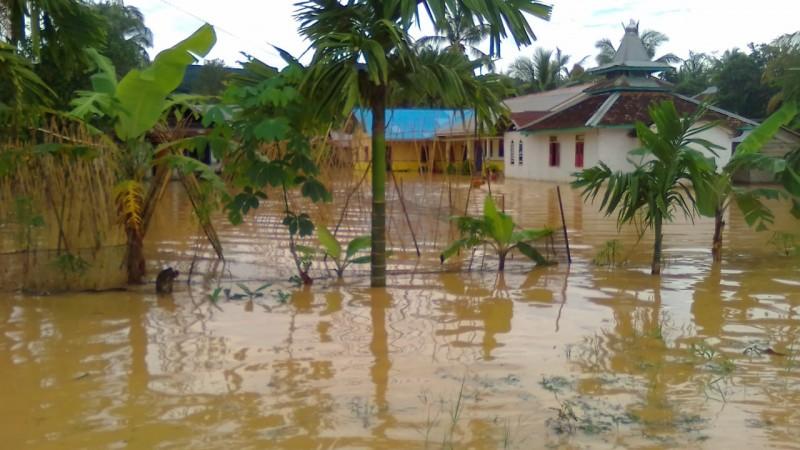 Bendungan Way Haru Jebol, Banjir Rendam Puluhan Rumah