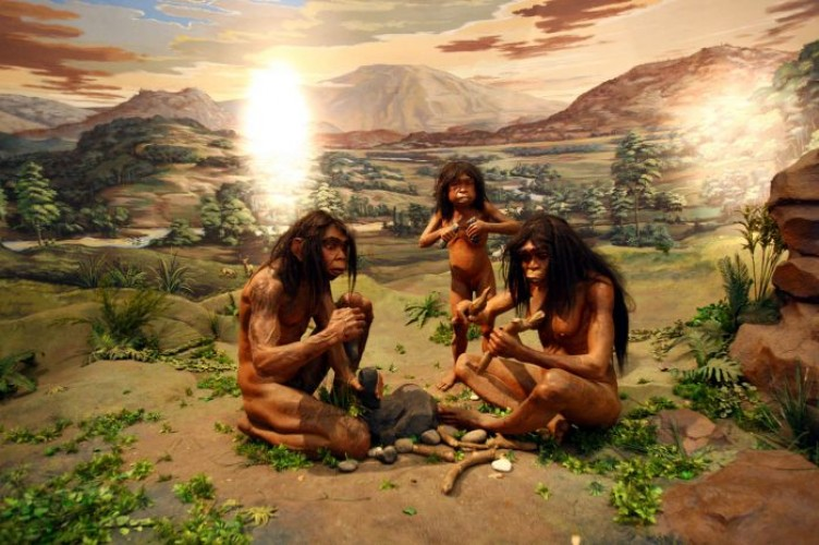 Berburu dan Evolusi Otak Manusia