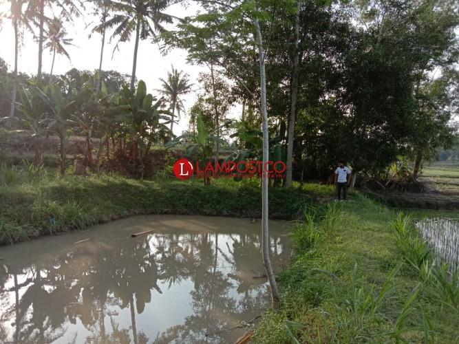 Bocah Kelas III SD di Tanjungjaya Tewas Tenggelam