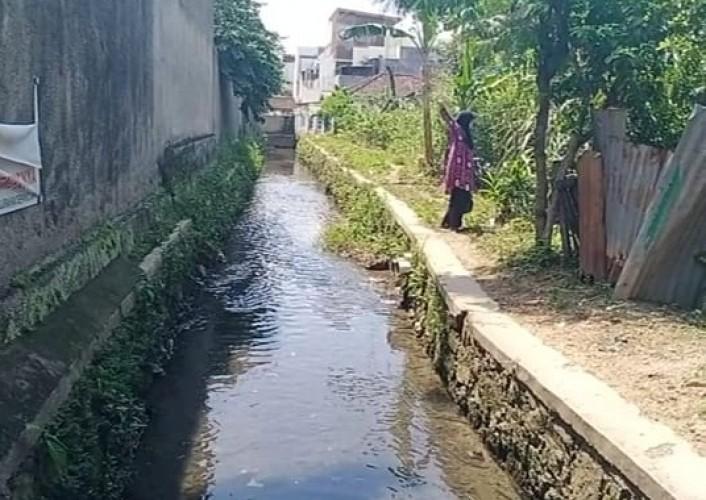 BPBD Diminta Evakuasi Ular Yang Bersarang di Drainase Sepangjaya