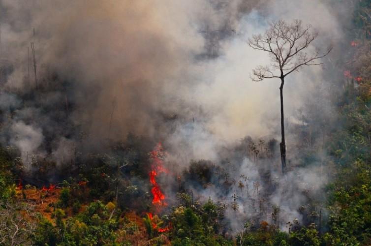 Brasil Kerahkan Tentara Atasi Kebakaran Amazon