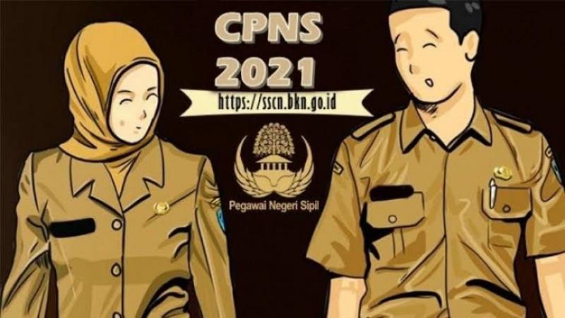 Butuh Enam, Formasi CPNS Lamsel Ini Cuma Satu Pendaftar