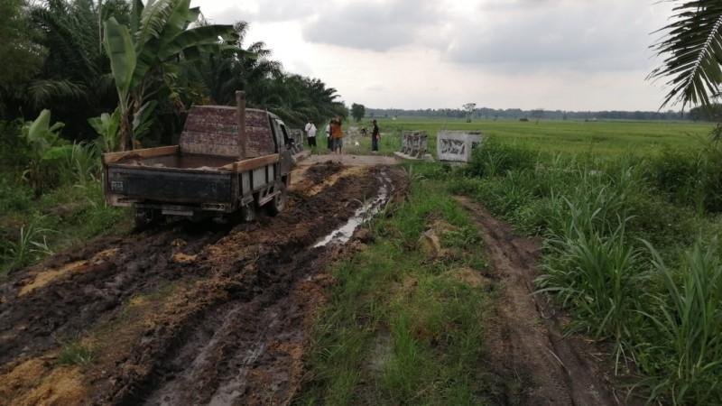 Butuh Pembangunan, Jalan di Candipuro Lamsel Masih Tanah