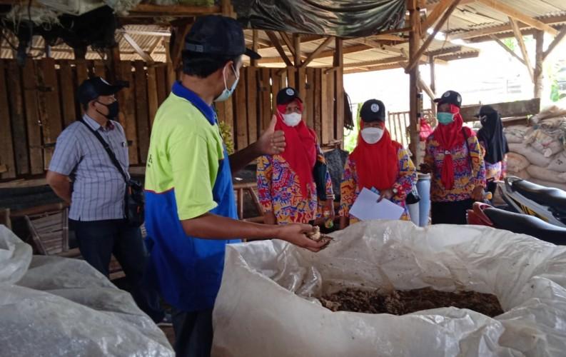 Coca-Cola Forest Ajak Forum Pendidik Menilik Potensi Bisnis Ternak Ruminansia di Prima Aqiqah
