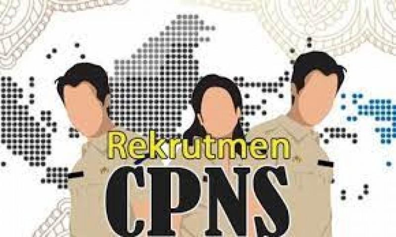 CPNS dan PPPK 2021 Lamsel Terima 516 Formasi
