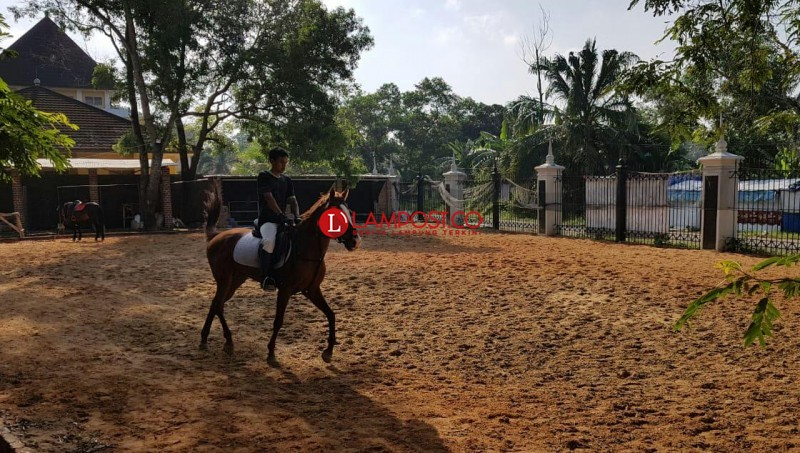 Cukup Merogoh Kocek Rp15 Ribu, Warga Bisa Nikmati Hiburan Berkuda