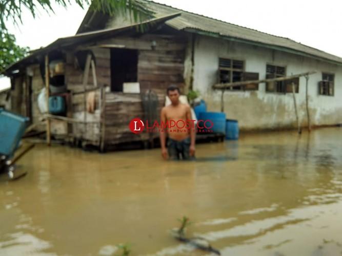 Dilanda Banjir, Warga Pusingan Dihantui Penampakan Buaya