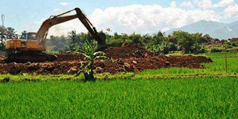 Dinas Pertanian Imbau Masyarakat Tak Alih Fungsi Lahan Sawah