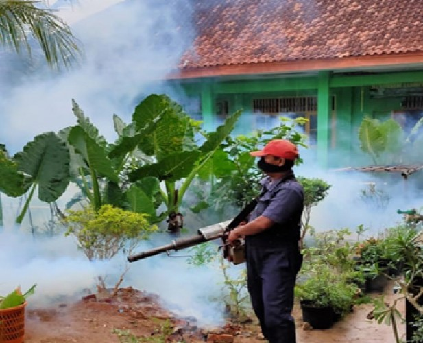 Dinkes Lamtim Imbau Warga Tingkatkan Kewaspadaan Serangan DBD