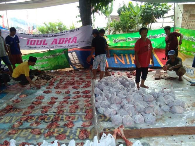 Disbunnak Lampung Imbau Bungkus Daging Kurban Tak Gunakan Plastik