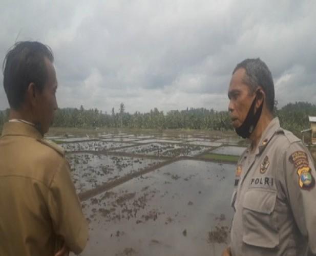 Dit Binmas Polda Asistensi Kampung Tangguh Nusantara Polres Tanggamus