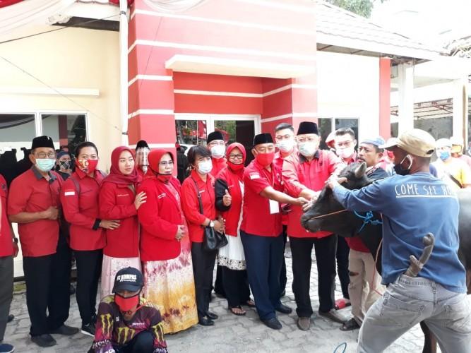 DPD PDI Perjuangan Provinsi Lampung Kurban 207 Sapi