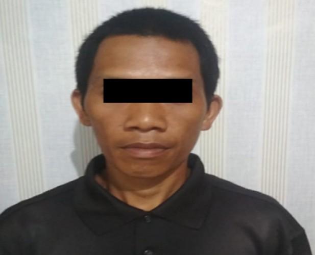 DPO Pencuri Sawit Diringkus di Tempat Persembunyiannya