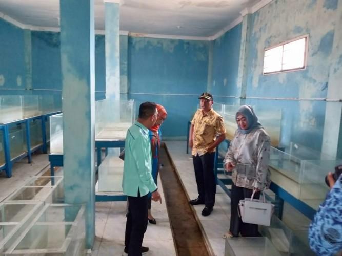 DPRD Kecewa Balai Benih Ikan Pringsewu Tak Berfungsi