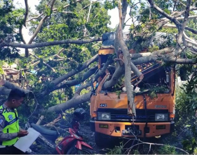 Dua Orang Terluka Tertimpa Pohon Tumbang di Palapa